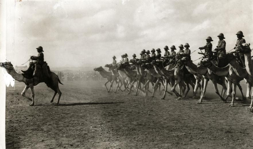 La bataille de Kordouf : escarmouche sur le Nil ! Majorwellcot